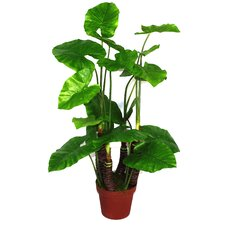 Artificial Taro Plant