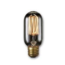40W Smoke Incandescent Light Bulb (Set of 4)