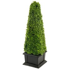 Artificial cm Boxwood Tower Plant