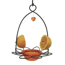 Oriole Decorative Bird Feeder