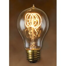 Nostalgic Edison Warm Glow Incandescent Light Bulb (Pack of 6)