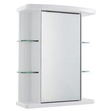 53cm x 66.5 cm Surface Mount Mirror Cabinet