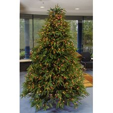 10' Windsor Multi-Function Christmas Tree with Clear and Multi Light