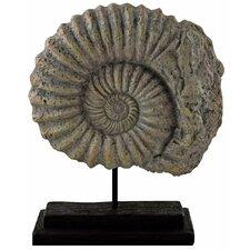 Figur Ammonite