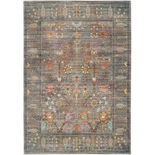 Ziraoui  Grey/Multi Area Rug