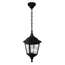 Kerry 1 Light Outdoor Hanging Lantern