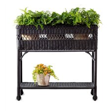 Easy Care Rectangular Plant Stand