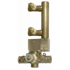 Thermostatic Rough in with 2 Volume Control Valves