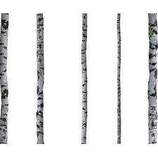 Super Real Birch Wall Decal
