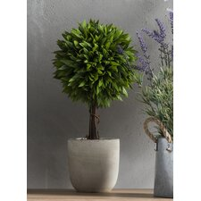 Faux Ball Topiary in Pot (Set of 4)