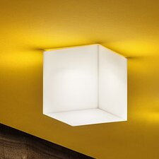 Beetle 1-Light Wall / Ceiling Sconce