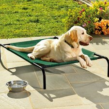 Large Weather-Resistant Raised Mesh Pet Bed