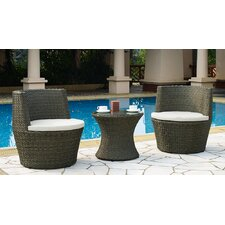 2 Piece Chair Set with Cushions