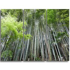 Dense Bamboo Forest of Japan - 3 Piece Photographic Print on Wrapped Canvas Set