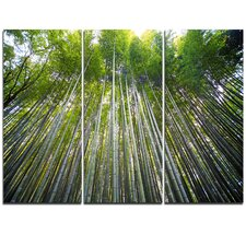 Bamboo forest of Kyoto Japan. - 3 Piece Photographic Print on Wrapped Canvas Set