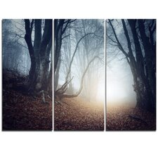 Magical Trees in Mysterious Forest - 3 Piece Graphic Art on Wrapped Canvas Set