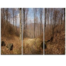 Forest Scenery with Bare Trees - 3 Piece Photographic Print on Wrapped Canvas Set