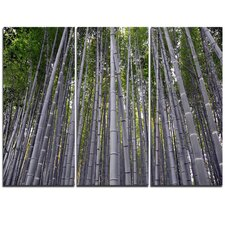 Thick Bamboo Trunks in Japan - 3 Piece Photographic Print on Wrapped Canvas Set