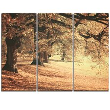 Dreamy Imagery of Autumn Forest - 3 Piece Graphic Art on Wrapped Canvas Set