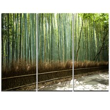 Beautiful View of Bamboo Forest - 3 Piece Photographic Print on Wrapped Canvas Set