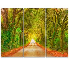 Fall Greenery and Road Straight Ahead - 3 Piece Graphic Art on Wrapped Canvas Set