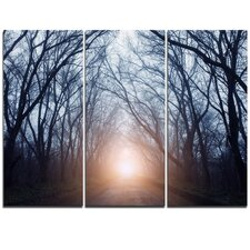 Foggy Sun in Mysterious Dark Forest - 3 Piece Graphic Art on Wrapped Canvas Set