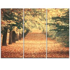 Autumn Forest with Walking Path - 3 Piece Graphic Art on Wrapped Canvas Set