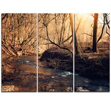 Brown Creek in National Park - 3 Piece Graphic Art on Wrapped Canvas Set