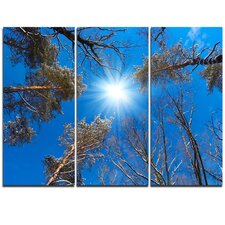 Bright Sun in the Tree Top Circle - 3 Piece Graphic Art on Wrapped Canvas Set