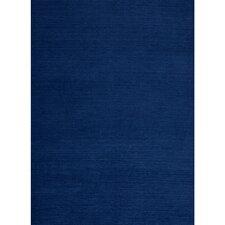 Flat Woven Navy Blue Indoor/Outdoor Area rug