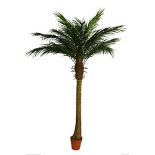 Decorative Artificial Phoenix Palm Tree in Pot