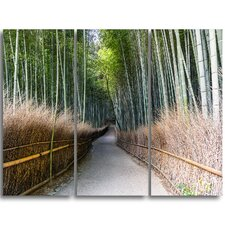 Straight Path in Bamboo Forest - 3 Piece Graphic Art on Wrapped Canvas Set
