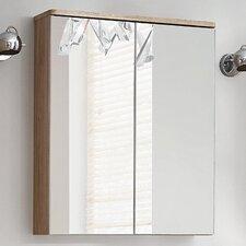 Valdivian 57cm x 70cm Surface Mount Mirror Cabinet