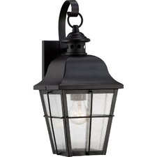 Danielson 1-Light Wall Lantern