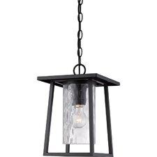 Bissonnette 1-Light Outdoor Hanging Lantern