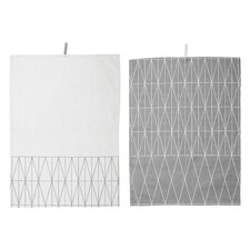 Cayden 2 Piece Kitchen Towel Set