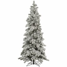 10' Flocked Kodiak Christmas Tree