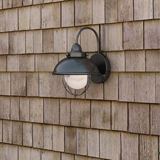 Everetts 1-Light Outdoor Barn Light