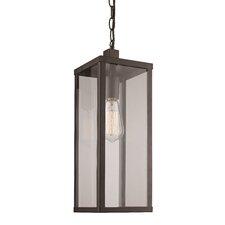 Pinon 1-Light Outdoor Hanging Lantern