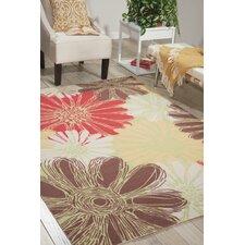 outdoor rugs you 39 ll love wayfair. Black Bedroom Furniture Sets. Home Design Ideas