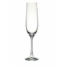 Bar 0.19L Champagne Flute in Clear (Set of 4)