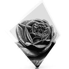 'Black Rose' Graphic Art on Wrapped Canvas