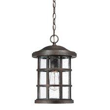 Autry 1-Light Outdoor Hanging Lantern