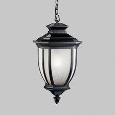 Greenview 1-Light Outdoor Hanging Lantern