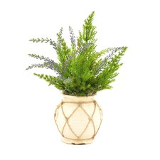 Faux Cedar with Lavendar in Twine-Wrapped Vase