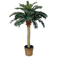 Palm Tree with Basket