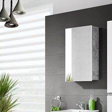 Atelier 40cm x 65cm Surface Mount Mirror Cabinet