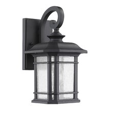 Fresno 1-Light Outdoor Wall Lantern