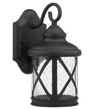 Morley 1-Light Outdoor Wall Lantern