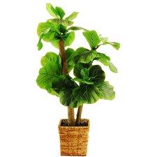 Wellesley Mini Tree in Basket